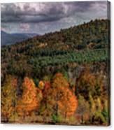 Autumn Fencerow Canvas Print