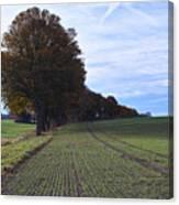 Autumn Fields, Syke, Germany Canvas Print