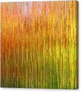 Autumn Fire Abstract Canvas Print