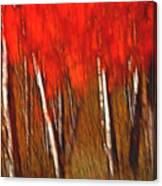 Autumn Fire Canvas Print