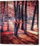 Autumn Firelight Canvas Print