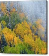 Autumn Fog And Snow Canvas Print