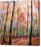 Autumn Forrest Canvas Print