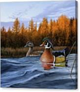 Autumn Front Canvas Print