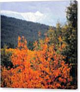 Autumn Glory And Mountain Cathedral Canvas Print