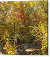 Autumn Glory - Unami Creek Sumneytown Pennsylvania Usa Canvas Print