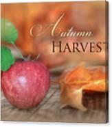 Autumn Harvest Canvas Print