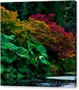 Autumn Has Begun Canvas Print