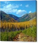 Autumn Hike Canvas Print