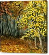 Autumn Hollow I Canvas Print