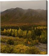 Autumn In August Brooks Range Alaska Canvas Print