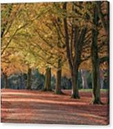 Autumn In Clifton, Bristol Canvas Print