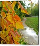 Autumn In Ellenberger Canvas Print