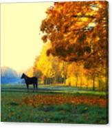Autumn In Kathrines Way Canvas Print