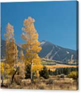 Autumn In Hart Pairie Canvas Print