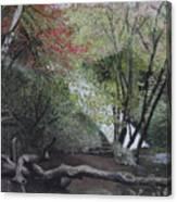 Autumn In Japan Canvas Print
