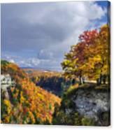 Autumn In Letchworth Canvas Print