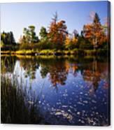 Autumn In Maine Usa Canvas Print