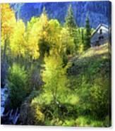 Autumn In Ophir - Colorado - Aspens Canvas Print