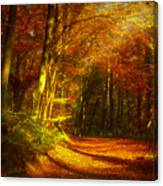 Autumn In Siebengebirge Canvas Print