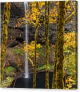 Autumn In Silver Falls Canvas Print