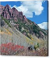 Autumn In The Aspen Hills Canvas Print