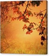 Autumn In The Fog. Canvas Print
