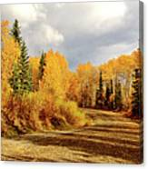 Autumn In The North Canvas Print