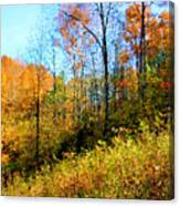 Autumn In The Tennessee Hills Canvas Print