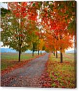 Autumn Journey Canvas Print
