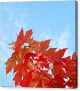 Autumn Landscape Fall Leaves Blue Sky White Clouds Baslee Canvas Print