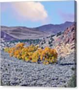 Autumn Landscape In Northern Nevada. Canvas Print