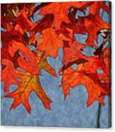 Autumn Leaves 19 Canvas Print