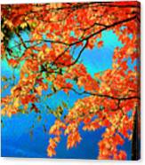 Autumn Leaves 8 Canvas Print