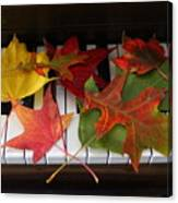 Autumn Leaves - A Love Song Canvas Print