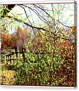 Autumn Leaves Against A Fence Canvas Print