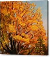 Autumn Leaves At High Cliff Canvas Print