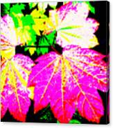 Autumn Leaves Holiday Style Canvas Print