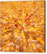 Autumn Leaves II Canvas Print