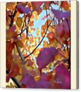 Autumn Leaves In Blue Sky Canvas Print