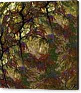 Autumn Leaves In Kyoto Canvas Print