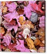 Autumn Leaves On The Forest Floor Canvas Print