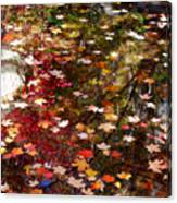 Autumn Leaves Reflections Canvas Print