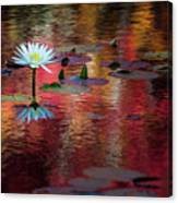 Autumn Lily Canvas Print