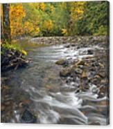 Autumn Meander Canvas Print