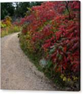 Autumn Mesa Trail Canvas Print