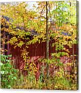 Autumn Michigan Barn  Canvas Print