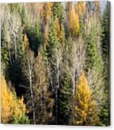 Autumn Mix Canvas Print