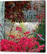 Autumn Mixtures Canvas Print