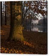 Autumn Morning In Park Branitz Canvas Print